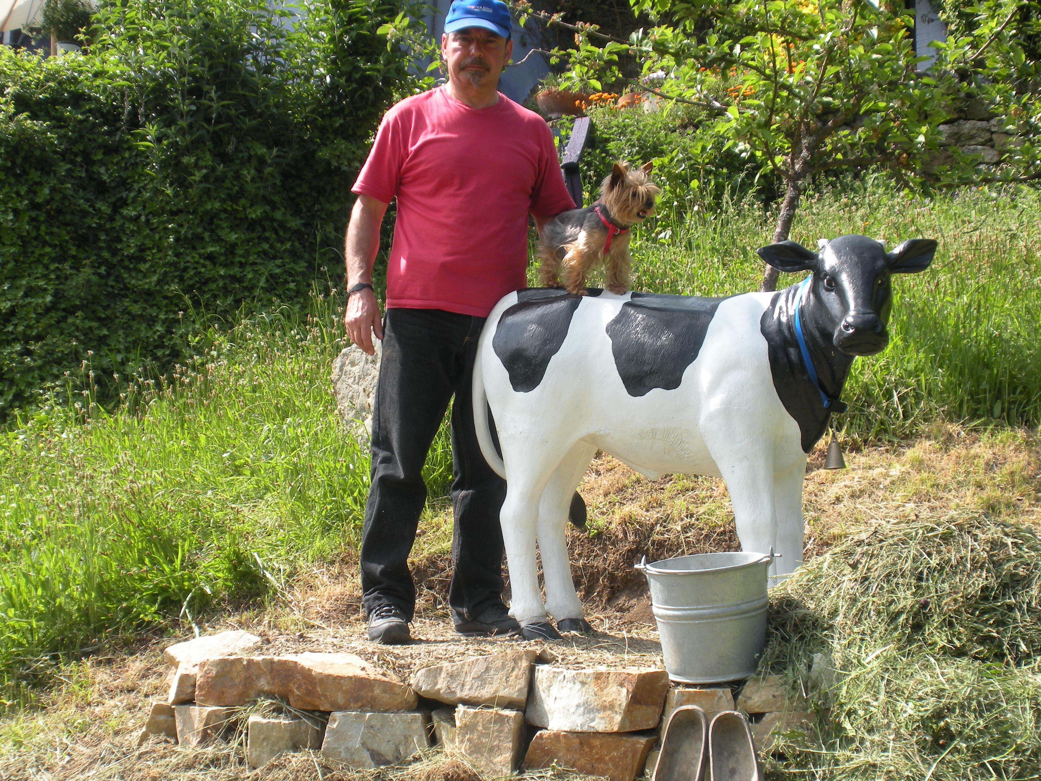TERNERA ... en un pueblo de Asturias